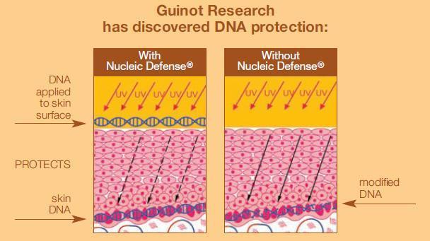 GuinotDNA